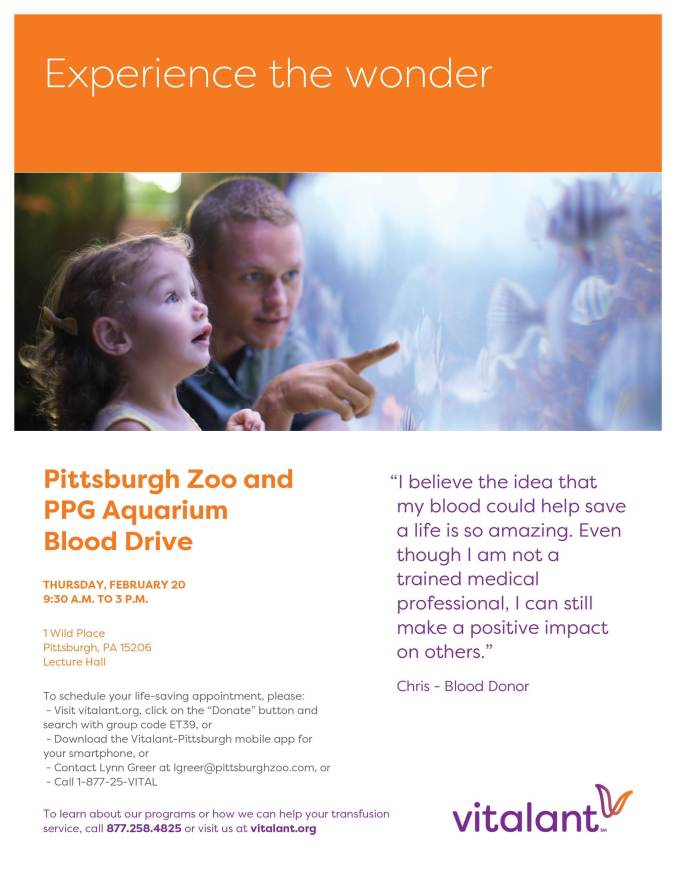 Flyer: Pittsburgh Zoo and PPG Aquarium Blood Drive. Thursday, February 20, nine thirty a m to three p m. one wild place, pittsburgh, pa one five two o six, in the lecture hall. To schedule your appointment, visit v i t a l a n t dot com, click on the donate button and search with group code e t three nine or contact lynn greer at l g r e e r at pittsburgh zoo dot com or calling one eight seven seven two five eight four eight two five.